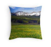 Golden Mountain Meadow Throw Pillow