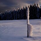 Icicles by niklens