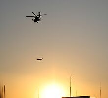 Choppers in the sunset by Nicki Kenyon