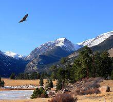 Beautiful Colorful Colorado by Tony L. Callahan