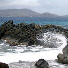 Crashing Waves by paula whatley