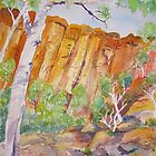 Kings Canyon Northern Territory by Virginia McGowan