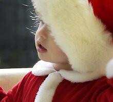 Santa's little helper! by Wendy Mogul