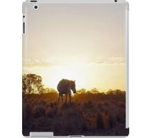 Shadowfall mare iPad Case/Skin