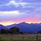 Purple Mountain Majesty by Ann Rodriquez