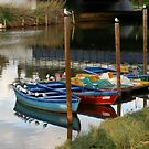 Boats on the Yarkon by Segalili
