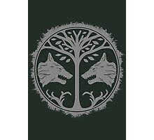 The Iron Banner - Destiny Photographic Print