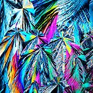 Glutaric acid crystals by photosynthesis