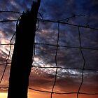 Rural Sunset II by ladywings