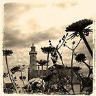 Phare en herbes I by Jean-Luc Rollier