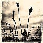 Phare en herbes III by Jean-Luc Rollier