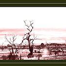 Lake Eppalock by Neophytos
