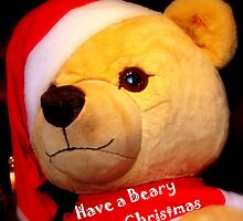 Have a Beary Merry Christmas by MEV Photographs