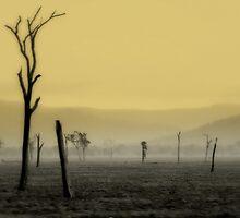 S P I R I T  Land by Holly Kempe