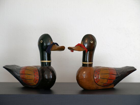 Korean Wedding Ducks by William Helms