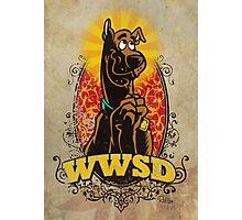 WWSD Photographic Print