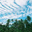 caribbean wonder by 945ontwerp