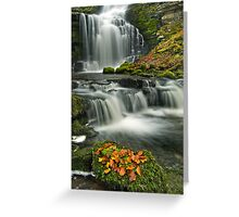 Scalebar Force, Settle Greeting Card