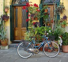 A Day in Lucca by Karen Ashenberner