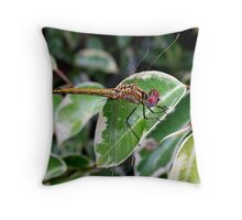 Dragon on Ficus Throw Pillow