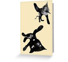 player cats Greeting Card