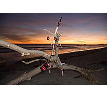 A Beach Bum's Christmas Tree Photographic Print