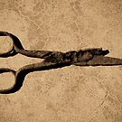 Scissors by Jean-Franois Dupuis