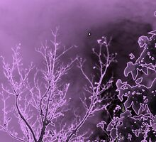 Purple Tree (Featured) by Cheyenne
