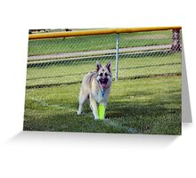 Im Ready to Play Momma! Greeting Card