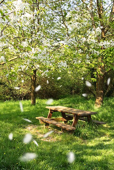 Spring picnic table by tilo