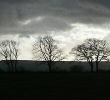 Desolate by SAngell