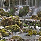 Meremac Springs by Dawne Olson