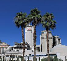 Las Vegas Strip by Frank Romeo