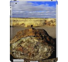 Petrified Wood iPad Case/Skin