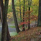 Evening Walk in Autumn by Dawne Olson