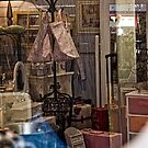 Window Shopping in Canberra (4) by Wolf Sverak