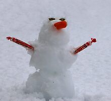 Pint-sized Polar Man by Amber Graham (grahamedia)