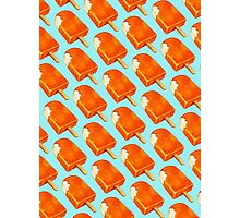 Creamsicle Pattern Photographic Print