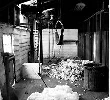 Brickendon Shearing Shed by samedog