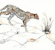 Majestic Cheetah by Maree  Clarkson