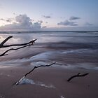 Seduction _ Bribie Island by Barbara Burkhardt