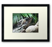I see you watching me! Framed Print