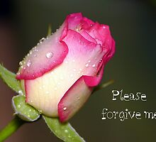 Please Forgive Me by ~ Fir Mamat ~