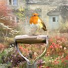 Spring Robin by Trudi's Images