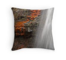 Freeze Frame Throw Pillow