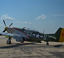 """North America P-51 Mustang """"The Gunfighter"""" by TeeMack"""