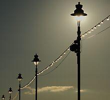 Sunlight or shade? by Glen Birkbeck