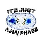 It's Just A (na) Phase by CellDivisionLab