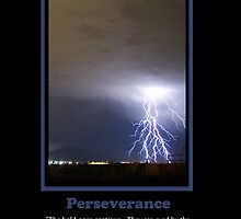 Perseverance Midst the Storm by Ryan Houston