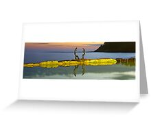 Cabbage Tree Bay Greeting Card
